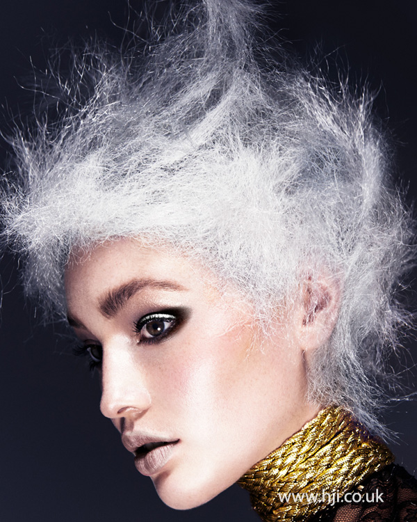 Sharon Dow Northern Ireland Hairdresser of the Year 2013 Colleciton Pic 4