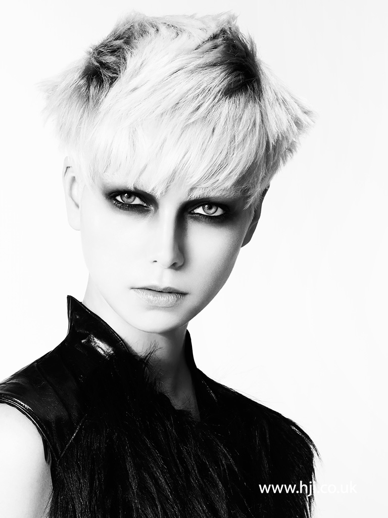Adam Bryant North Western Hairdresser of the Year 2013 Collection pic 1