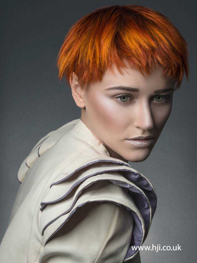 Clayde Baumann Colour Technician of the Year 2014 Collection pic 3