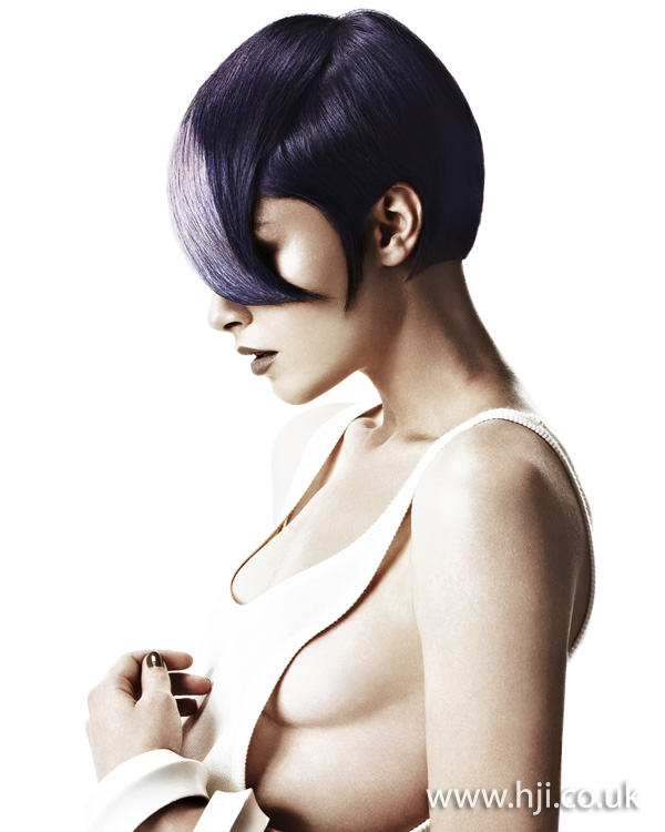 HOB Salons Artistic Team of the Year 2011 Collection pic 3