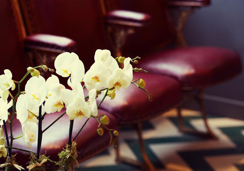 Wonderlab salon - flowers.jpg