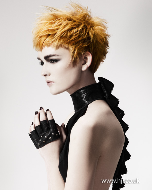 Gary Taylor North Western Hairdresser of the Year 2012 Collection pic 8