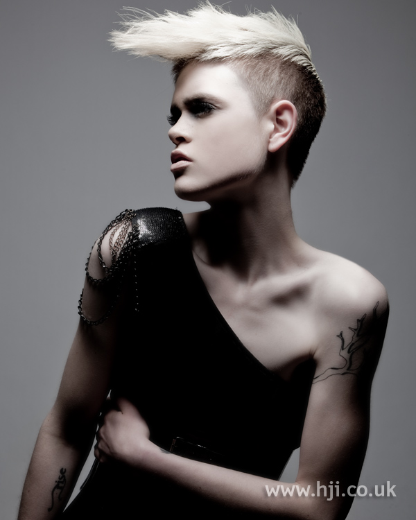 Chris Appleton Eastern Hairdresser of the Year 2010 Collection pic 7