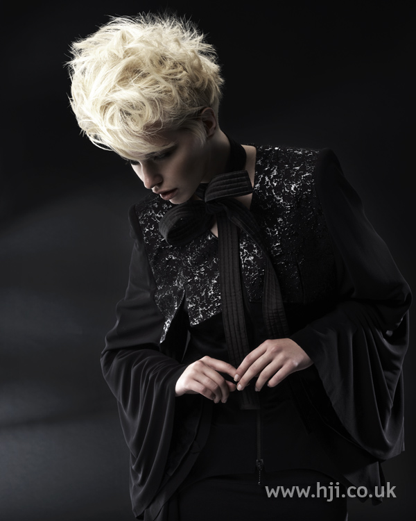 Sharon Peake North Western Hairdresser of the Year 2010 Collection pic 3