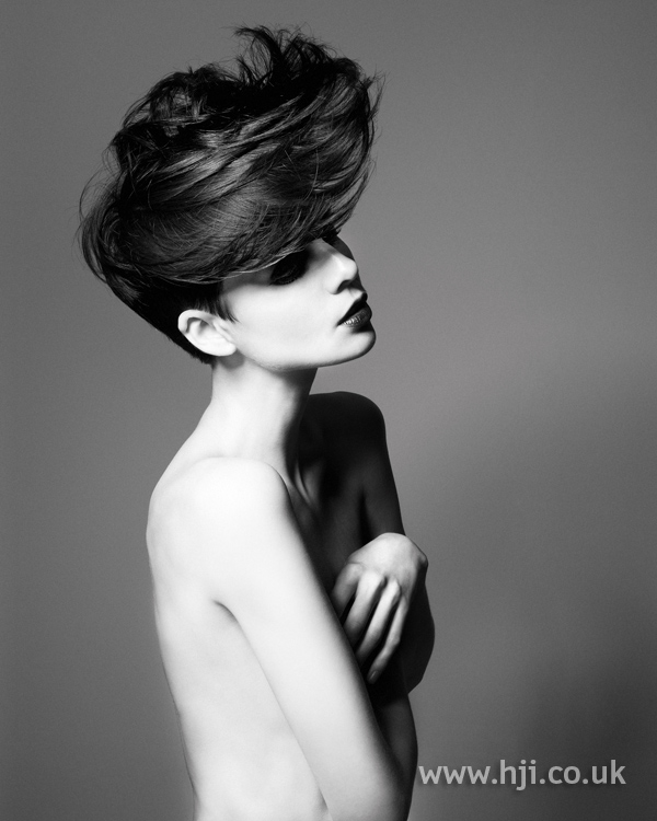 Sykler McDonald London Hairdresser of the Year 2010 Collection pic 2