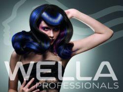 wella-trend-vision-2011-info.jpg