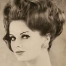 1963-brunette-volume.jpg
