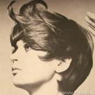 1969-bob-movement.jpg