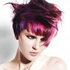 2009-movement-purple.jpg