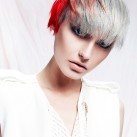Choppy-pixie-crop-with-grey-and-bright-red-pannelling.jpg